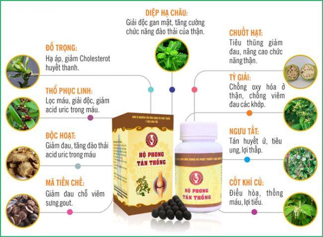 Thành phần thuốc Hộ Phong Tán Thống