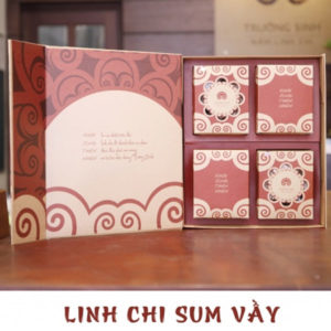 Hộp quà linh chi sum vầy - Linh chi trường sinh