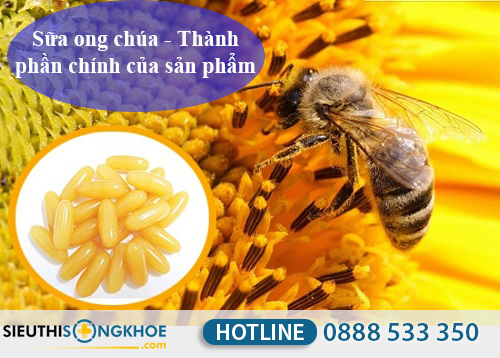 Sua ong chua costar royal jelly 1450mg 5
