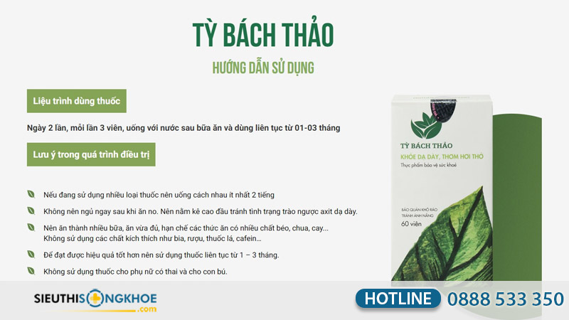 ty bach thao