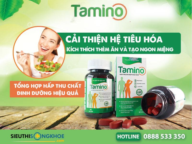 vien tang can tamino