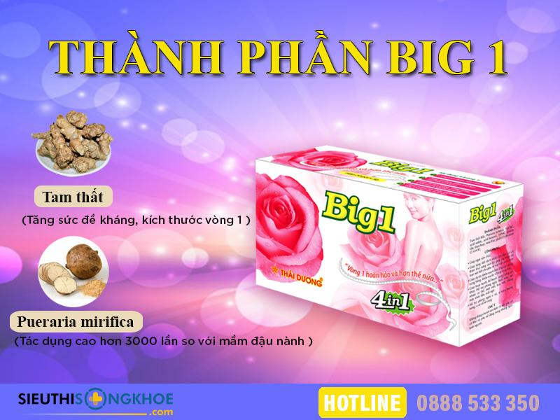 thanh-phan-vien-no-nguc-big-1