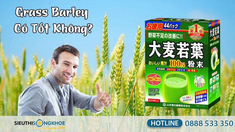 grass barley có tốt không