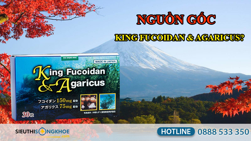 nguồn gốc king fucoidan & agaricus