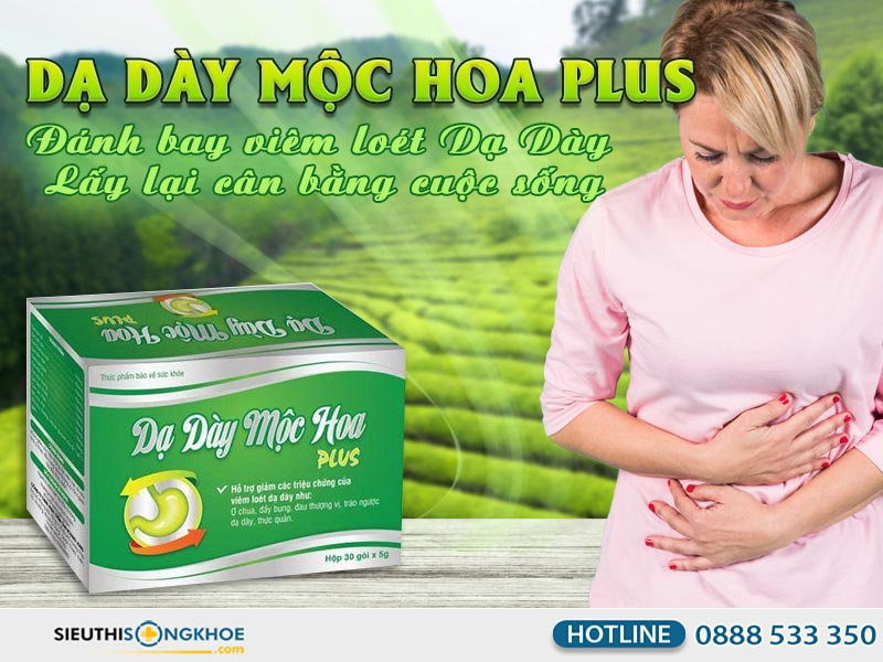 da-day-moc-hoa-plus